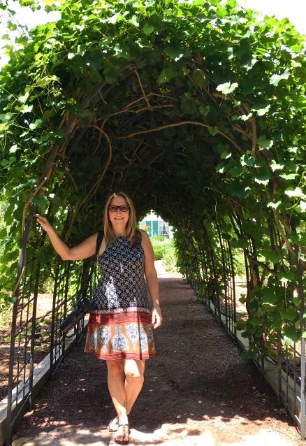 The grapevine was thick and lush over the arched walk this time