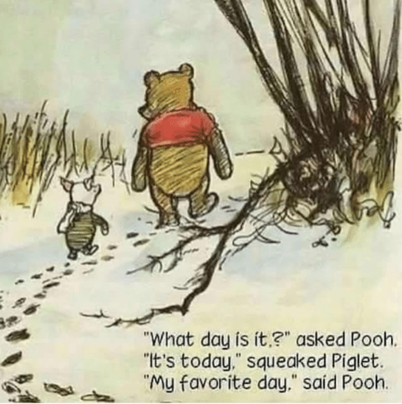 Oh Bother..