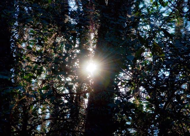 A Good Day/#poetry #photography